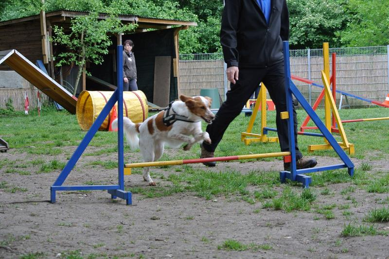 Katie jump