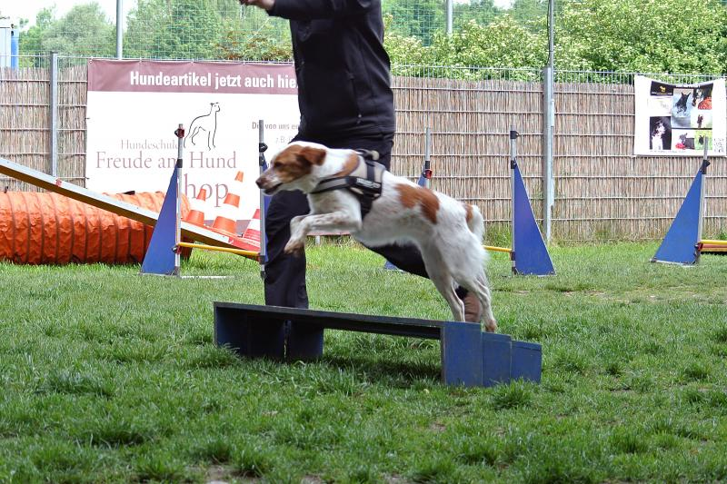 Katie long jump