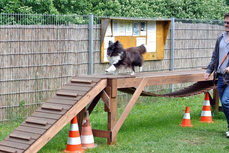 Lola bridge