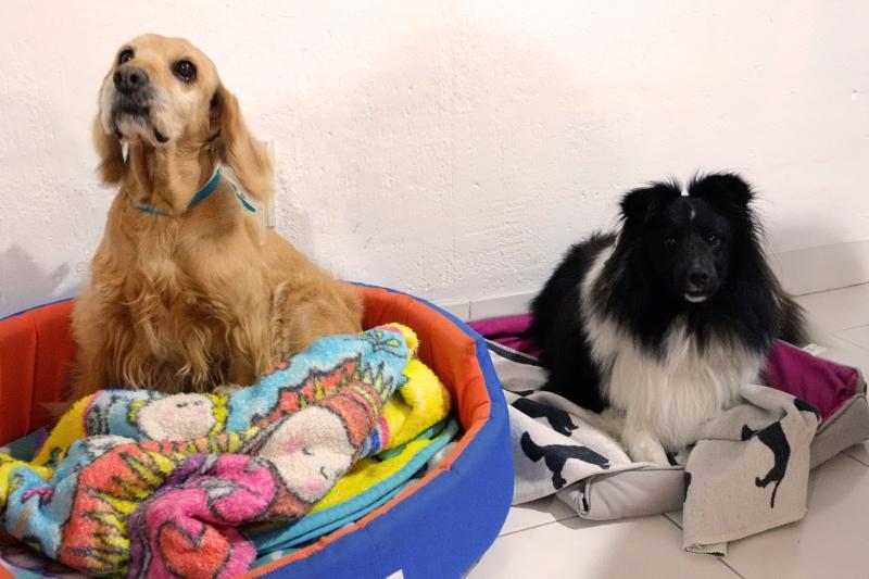 Zamy & Lola