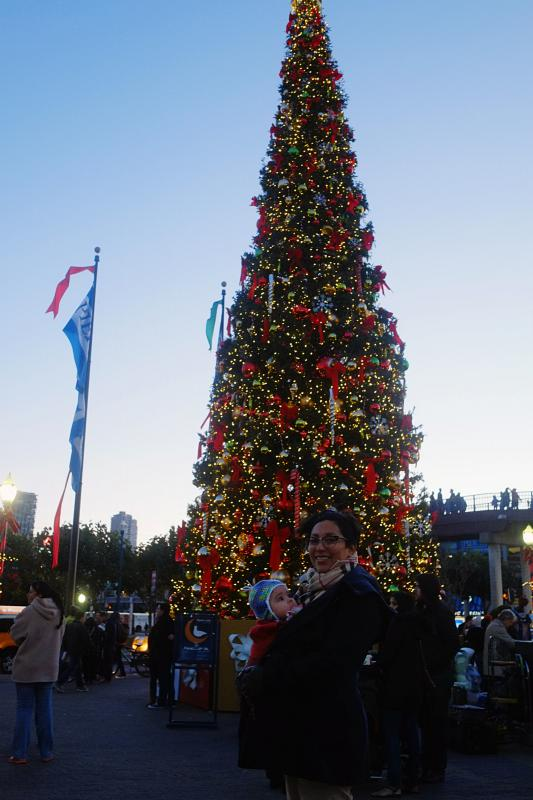 Christmas Tree at Pier 39