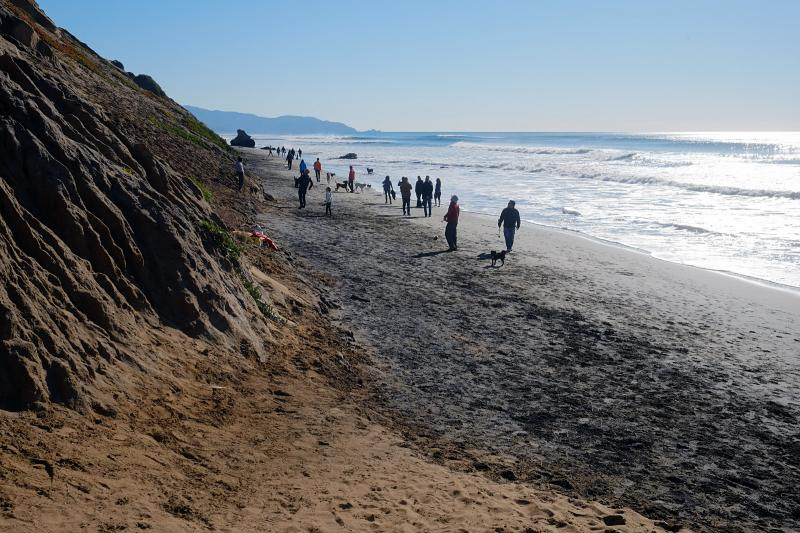 Dog Beach at Fort Funston