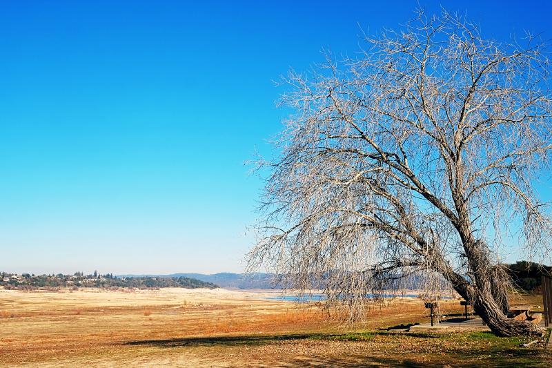 Folsom Park